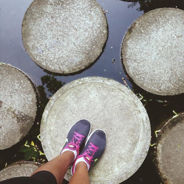 Stepping stones, Zürichhorn